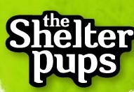 Shelter Pups promo codes