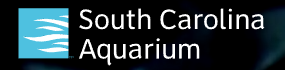South Carolina Aquarium Coupon Code