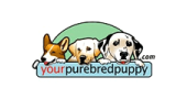 Your Purebred Puppy Coupon Code