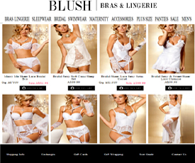 Blush Bras and Lingerie